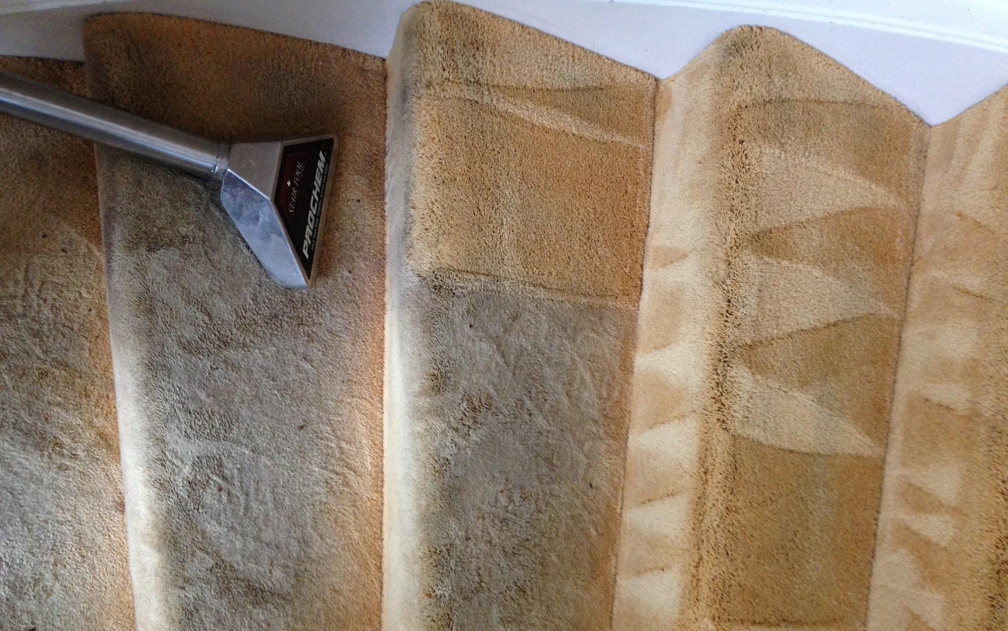 Tapijt Reinigen Prijzen : Iron man tapijt en vloerkleed reinigen bussum